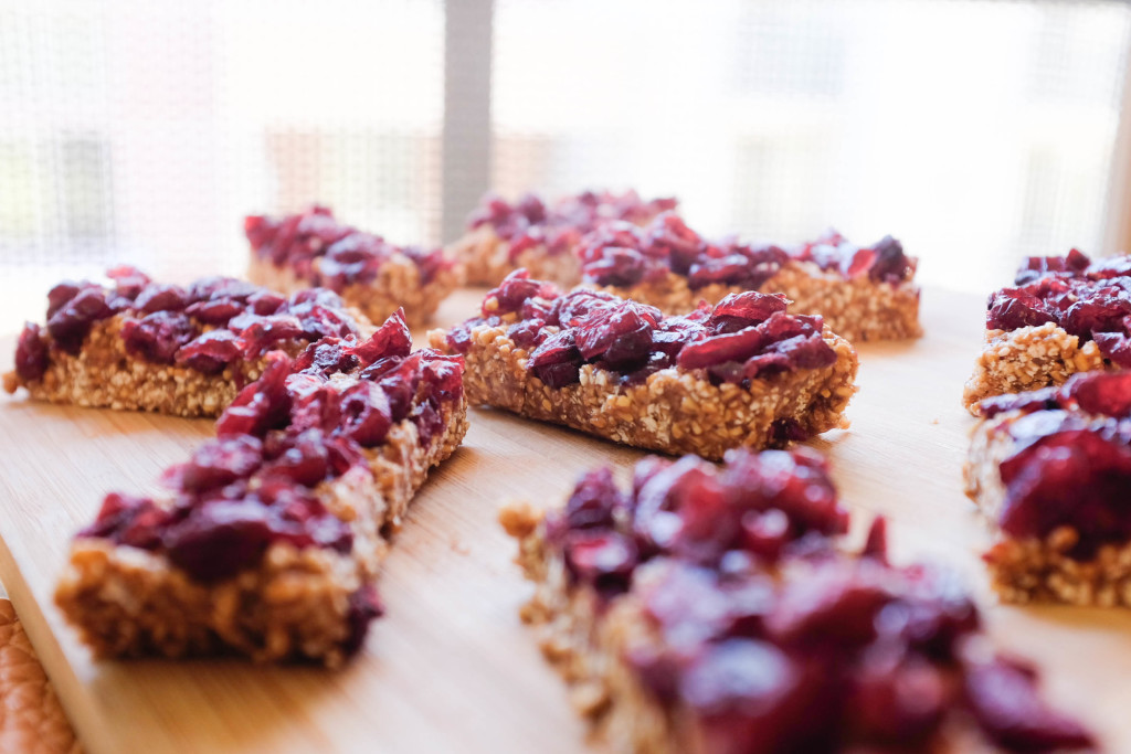 5 Ingredient Granola Bars with Steel-Cut Oats