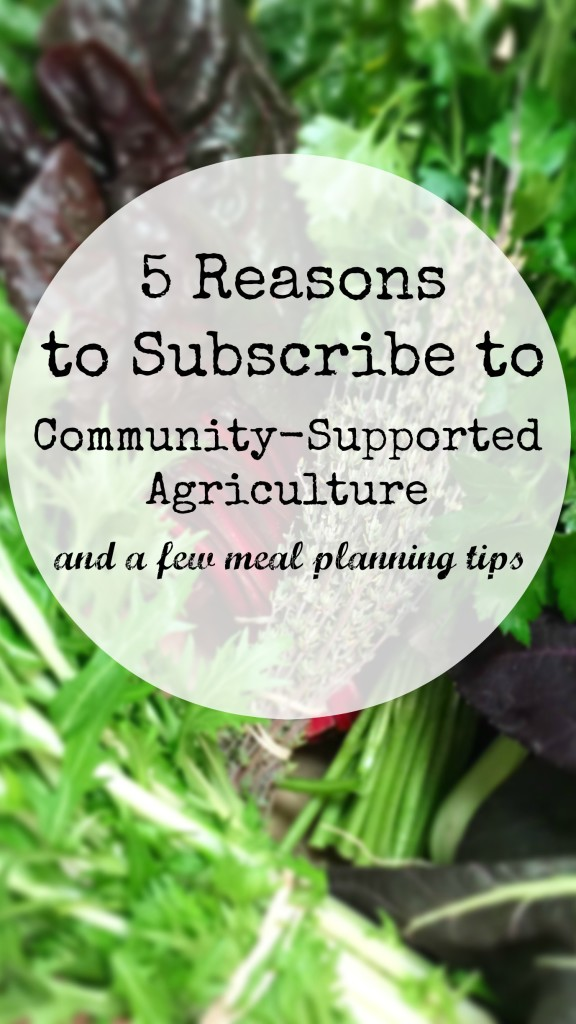 Community supported agriculture is the best way to dine seasonally and love the planet, here are some tips and reasons to consider it