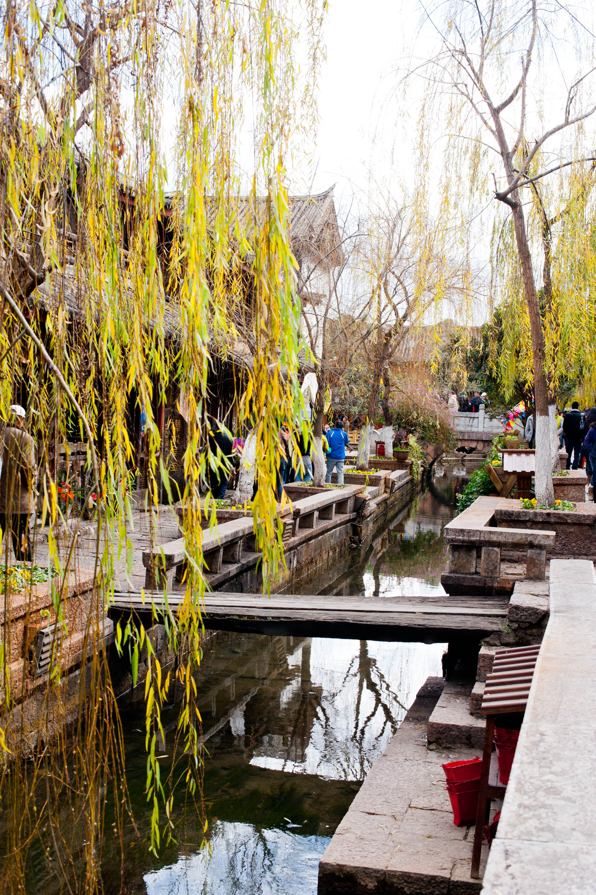 lijiang latin singles Discover the best of yunnan with 9 tours travelling to places like kunming and  lijiang all major brands biggest selection best prices.