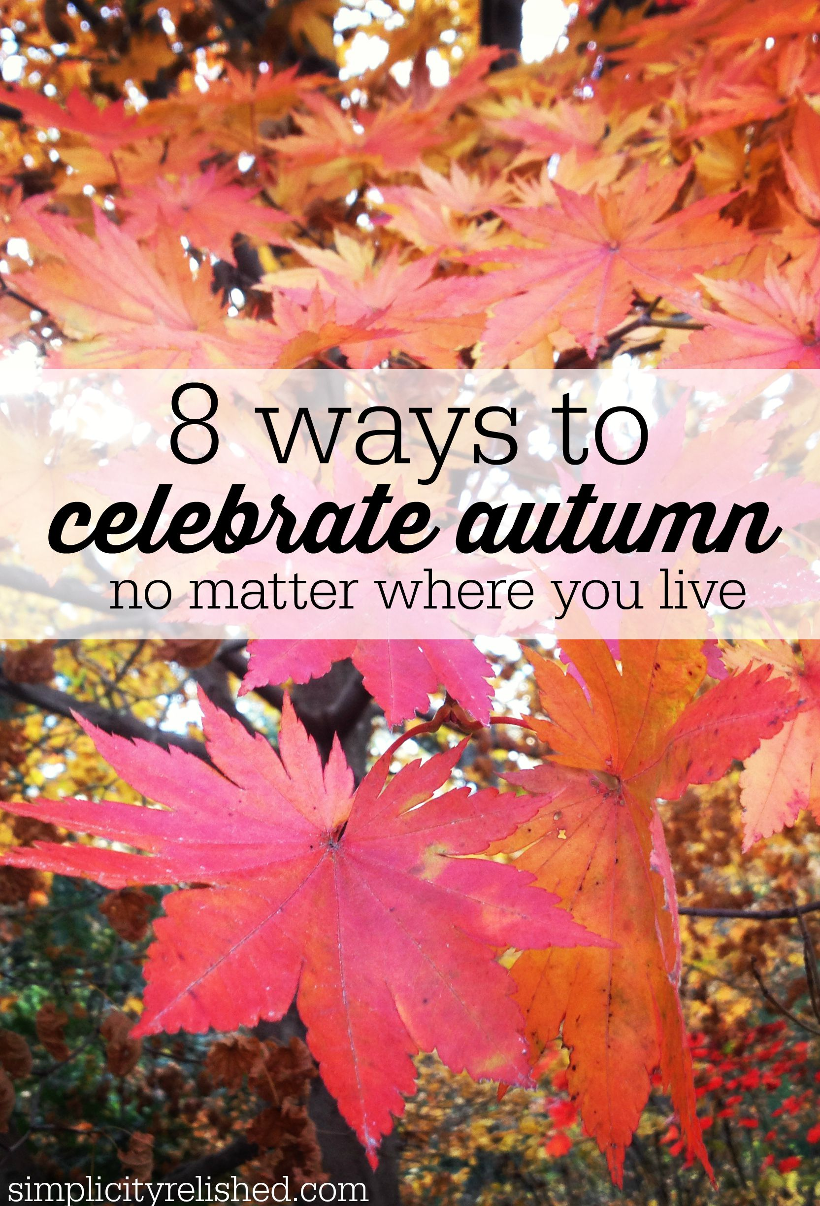 8 ways to celebrate fall no matter what the weather is