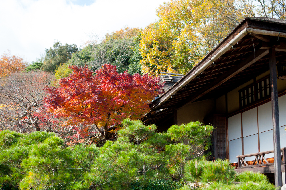 The Secret Garden Feel Of The Extensive Walking Path Is The Perfect Way To  Experience Autumn In Kyoto. Youu0027ll Find This Villa At One End Of The  Arashiyama ...
