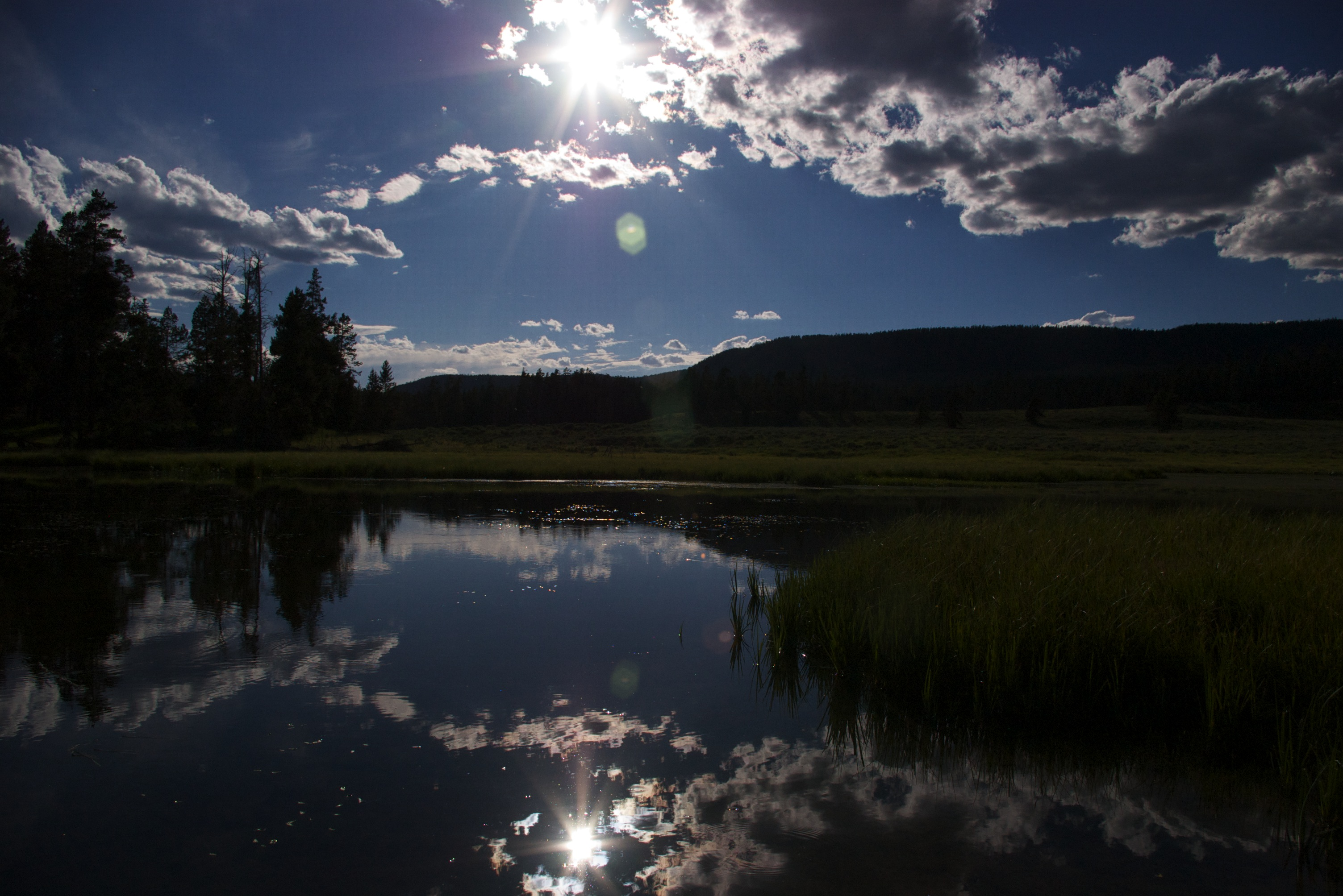 Oasis in Yellowstone National Park