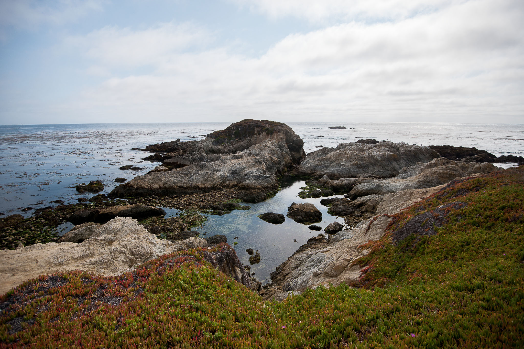 A View from 17 Mile Drive, Pebble Beach