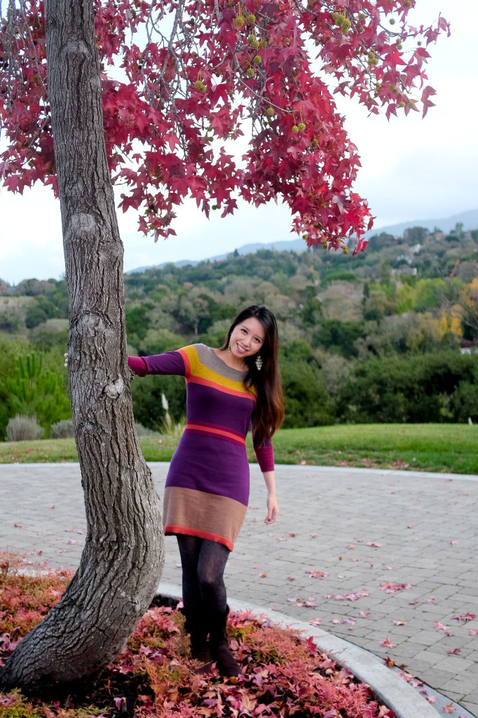 Leaves And A Sweater Dress