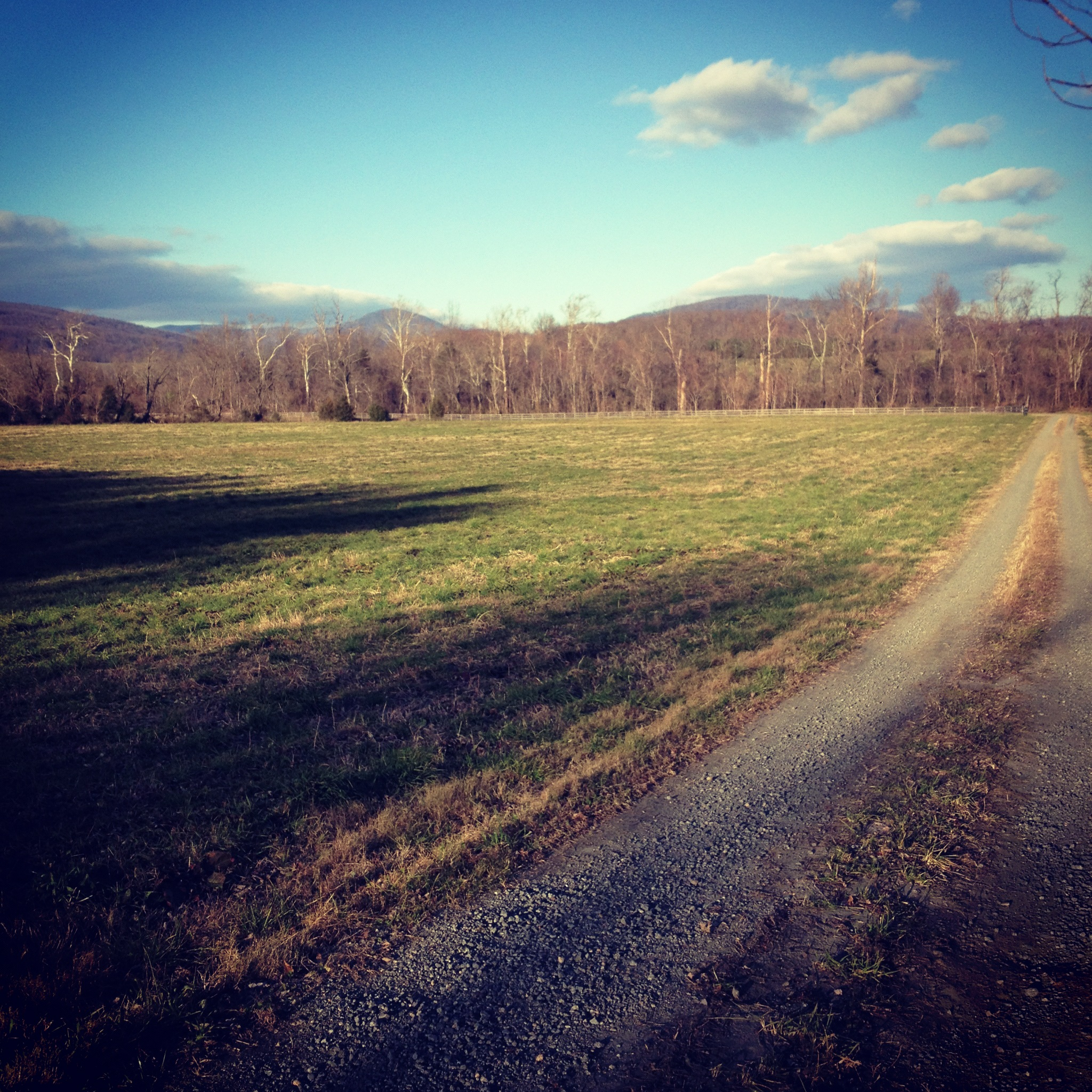Views from the farm in Virginia!