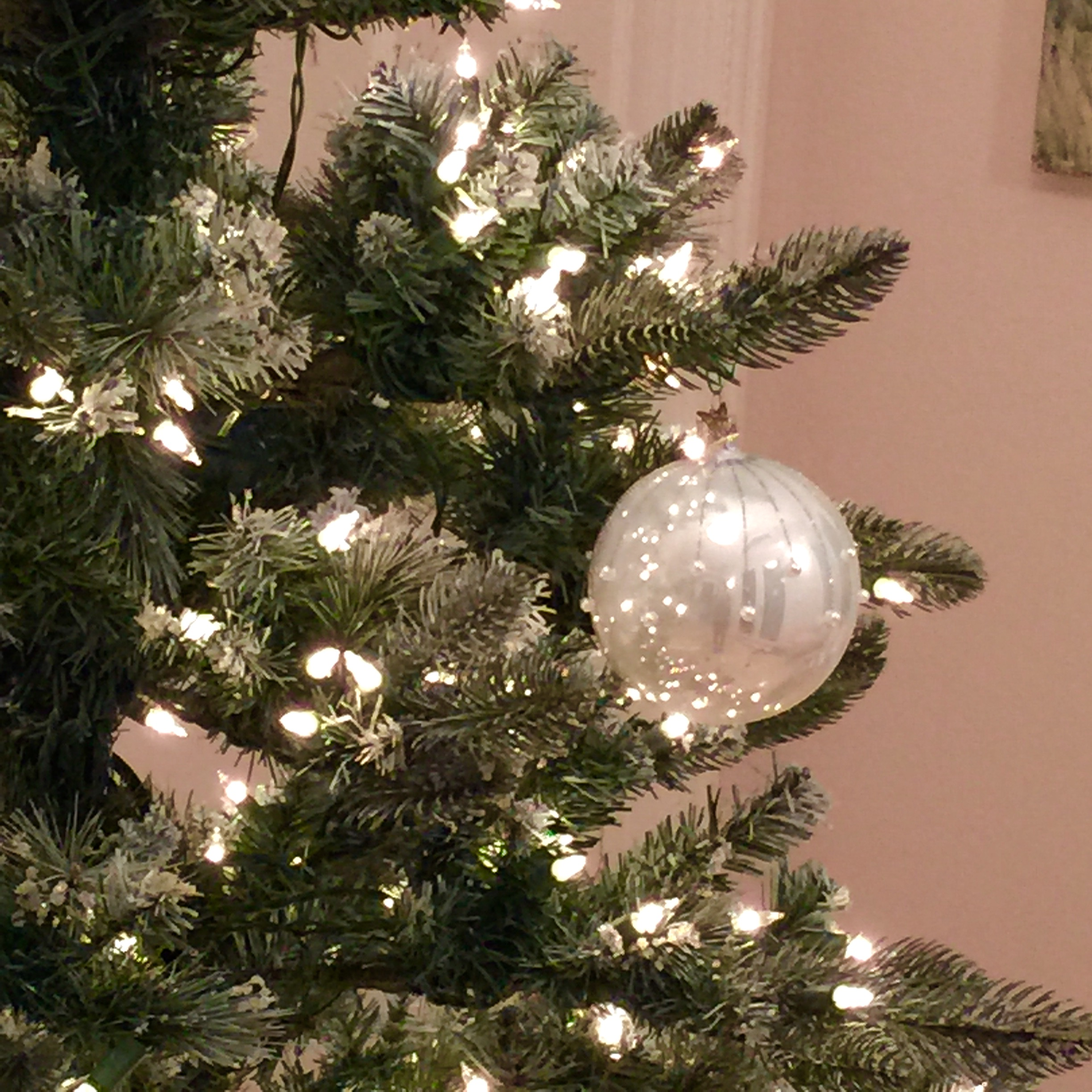 Sparkling on our own tree!