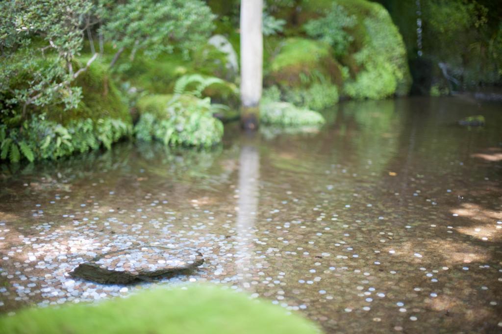 Silver Pavilion Pond, Kyoto