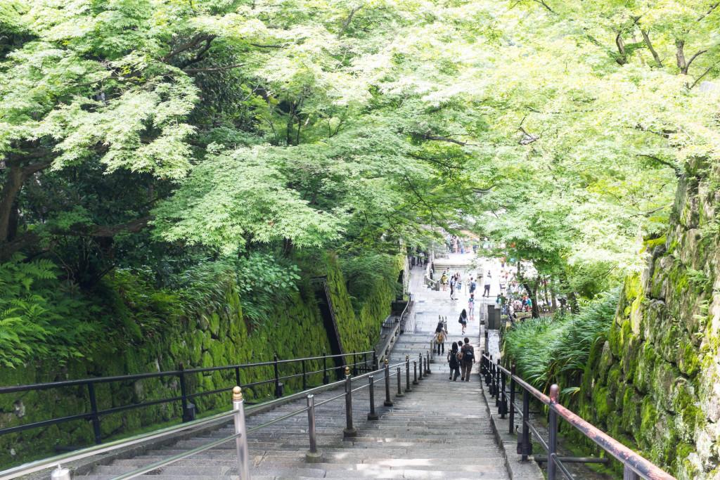 kiyomizu-dera temple steps