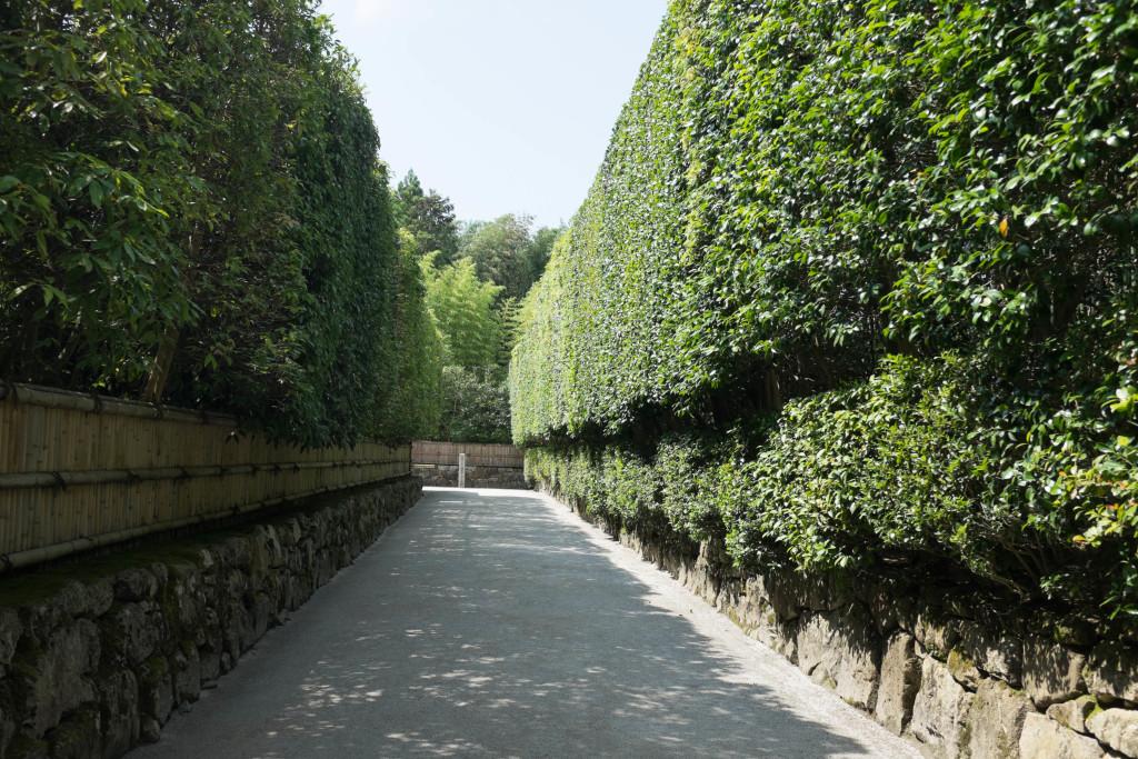Silver Pavilion Walkway, Kyoto