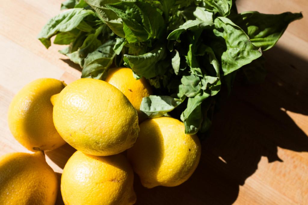 Effortless No-Squeeze Lemonade Ingredients