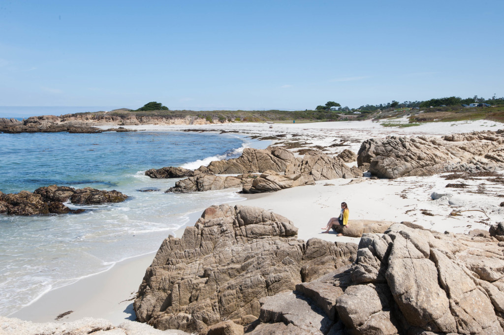 guide to 17 mile drive in pebble beach - simplicity relished