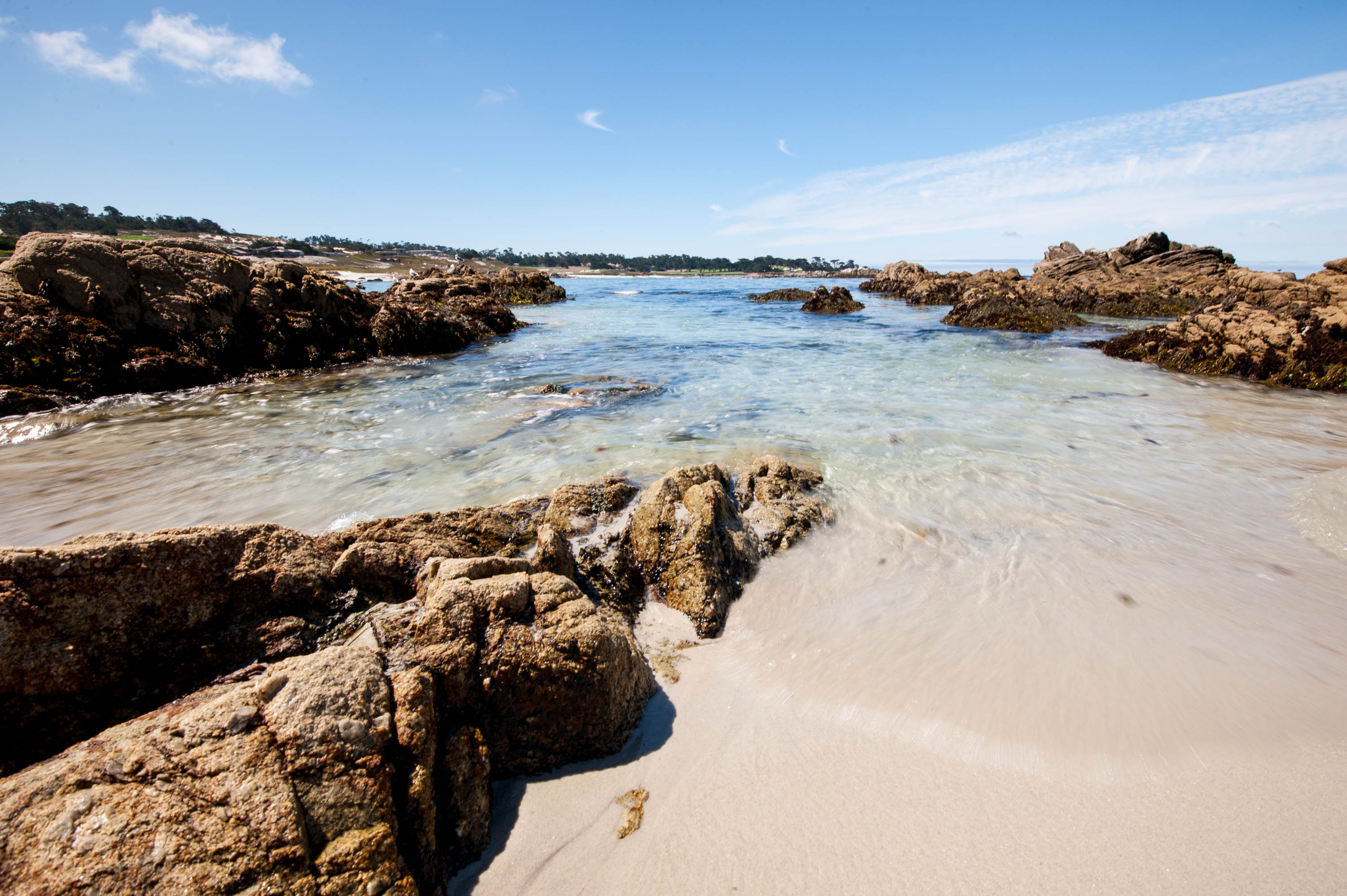 Must See Stops On 17 Mile Drive