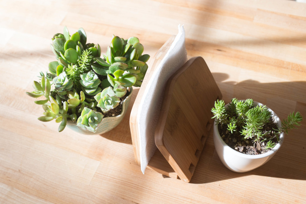 7 foolproof secrets to decorating with plants- centerpiece