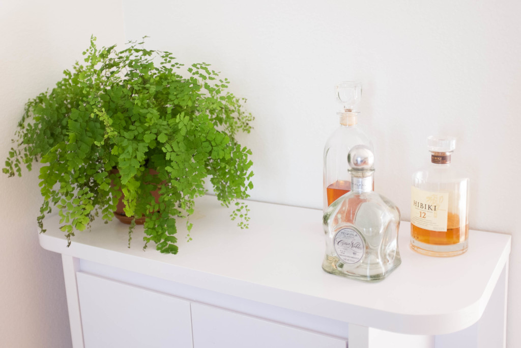7 foolproof secrets to decorating with plants- maidenhair fern barcart