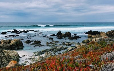 A road trip guide to California's gorgeous central coast